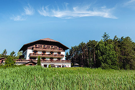 Naturidylle Hotel Waldsee (Sommer)